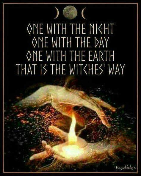 witch quotes 23 witch quotes that will fill your day with magick