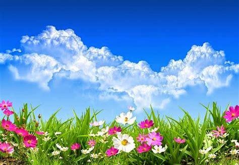 imagenes bonitas de paisajes y flores espectaculares paisajes con flores de colores muy bonitas