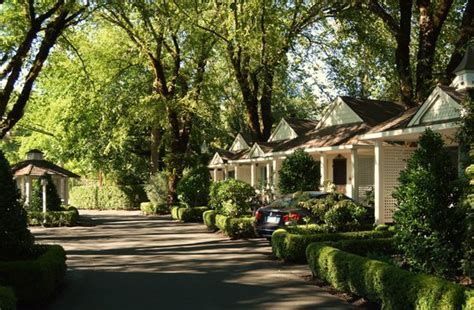 enjoy picture of cottage grove inn calistoga tripadvisor