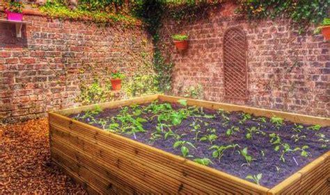 Soil For Raised Vegetable Beds Uk