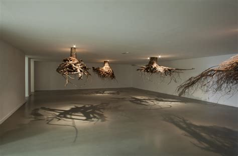 root art design zoetermeer tree roots emerge from the ceiling in an installation by