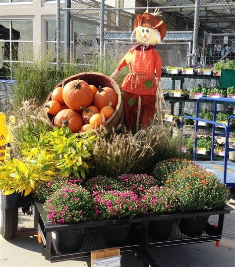 lowes garden center lowes garden center outdoor plants lowe s bayshore