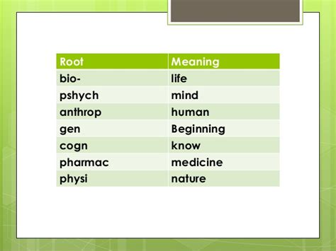biography root word meaning root words prefixes suffixes