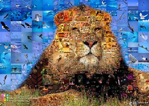 Wie Macht Eine Fotocollage 3481 by Was Ist Eine Collage Schule