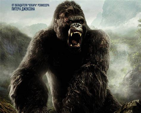 king kong king kong wallpapers wallpaper cave