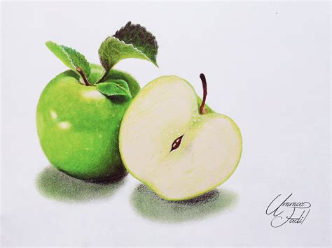 fruit drawings drawing fruits 2 green apple colored pencils by f a d