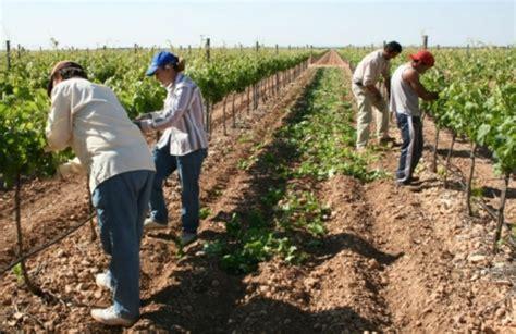 paritarias de trabajadores rurales mil trabajadores rurales cordobeses est 225 n afectados por