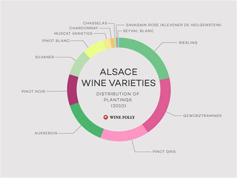 wines of alsace guides to wines and top vineyards books understanding alsace wine w maps wine folly