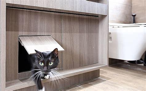 arredare un mini appartamento arredare un mini appartamento a misura di gatto animali