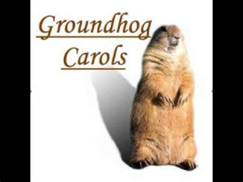 groundhog day the meaning 10 images about groundhog day punxsutawney phil on