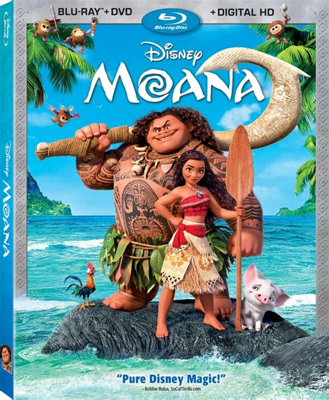 Punch 3d Home Design Review by Review Moana Blu Ray Rotoscopers