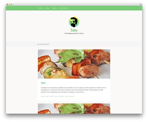 wordpress themes free food blog 30 free responsive photography wordpress themes 2017