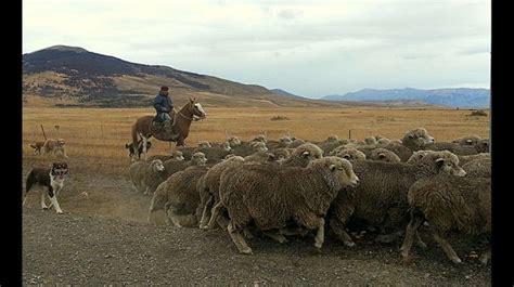 imagenes de la vida rural fotos im 225 genes de la vida rural alrededor del mundo