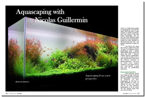 Aquascaping Magazine by Aquascaping World Magazine Aquascaping With Nicolas