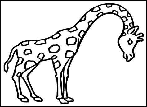 giraffe coloring pages free printable free printable giraffe coloring pages for kids