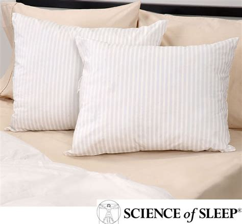 Science Of Sleep Pillow by Science Of Sleep Never Flat Pillows Set Of 2 Scatter Cushions By Overstock
