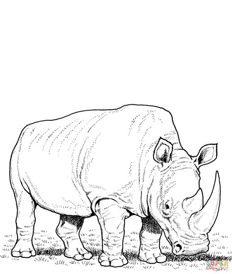 coloring page rhino rhino coloring page 1 11994