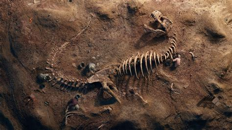 rex fossil wallpapers hd wallpapers id