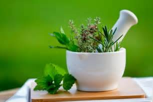 Outdoor Baby Showers - 5 most important herbs for the home cook home wizards
