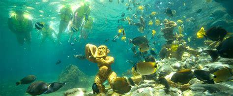boat registration oahu rainbow reef snorkeling aulani hawaii resort spa