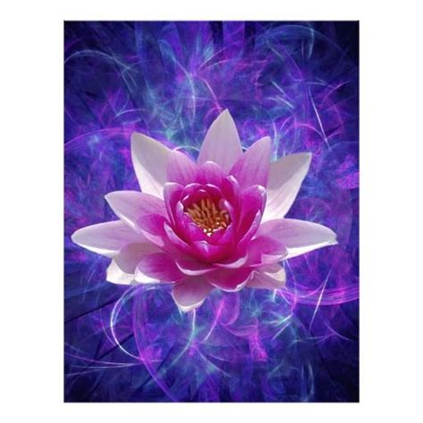 lotus flower color meanings best 25 lotus flower meanings ideas on