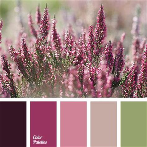 spring color schemes 25 best ideas about spring color palette on pinterest