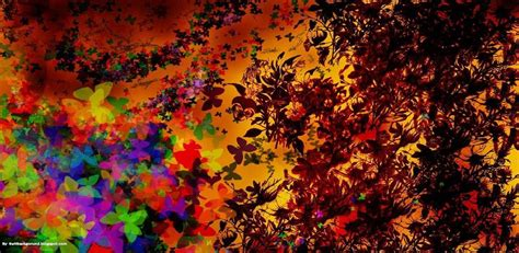 Dried Flowers and Butterflies Background   TwitBackground