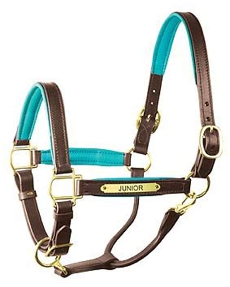 custom leather halters for horses halters horses and leather on
