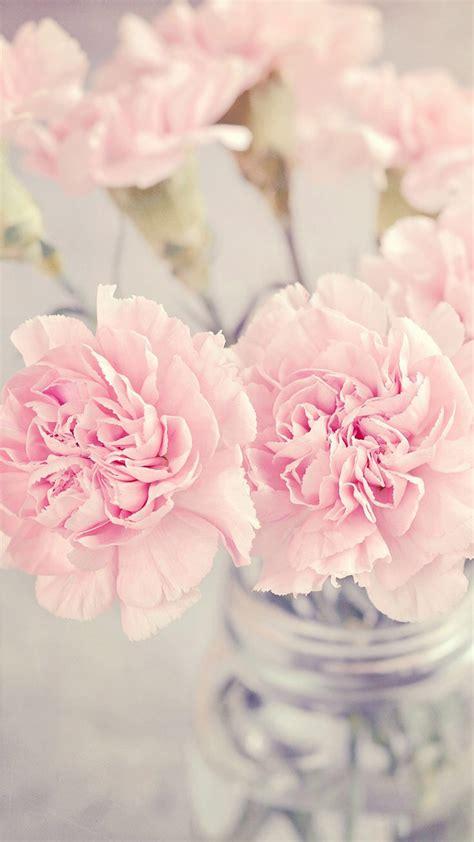 wallpaper flower pastel pretty pink flowers pastel wallpaper iphone background