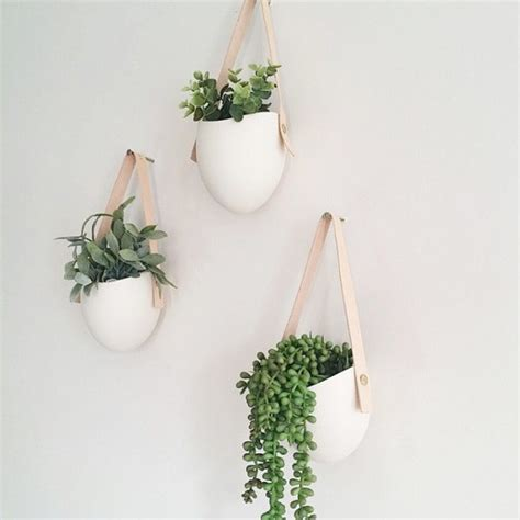 hanging wall planter 30 unique hanging planters to help you go green graphic