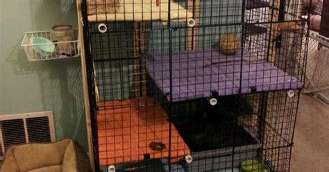 Rabbit Cage Shelf by Rabbit Cage Cubes Diy Condo Shelves Pet House Home