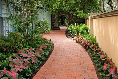 florida landscaping plants modern plants for landscaping australia landscape
