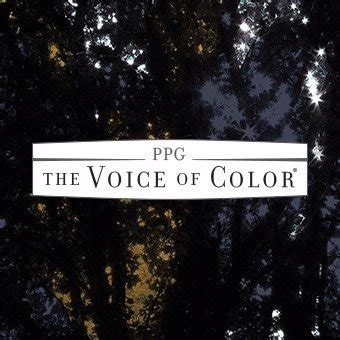 voice of color ppg voice of color voiceofcolor