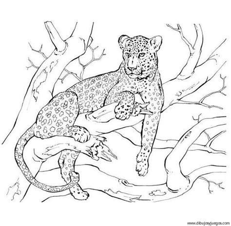 juegos de felinos para colorear imprimir y pintar dibujo de leopardo 023 dibujos y juegos para pintar y