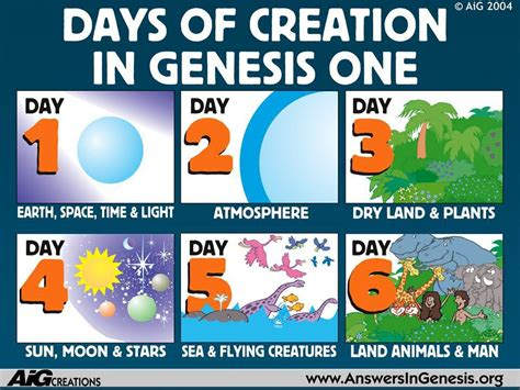 themes in creation stories what was created on each day of the creation week