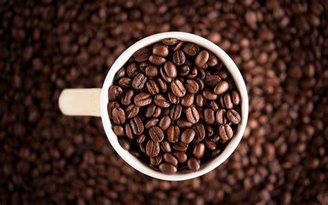 desktop wallpaper coffee seeds macro desktop wallpaper train of thought 10 quick coffee facts mytallpointofview