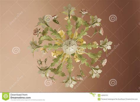 Lustre Fleurs by Lustre De Fleur Image Stock Image Du Isolement Fleur