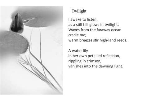 2fish a poetry book books twilight fish in a house two poems yin s poetry