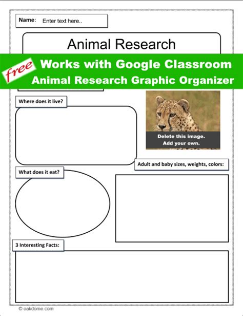 Google Classroom Animal Research Graphic Organizer K 5
