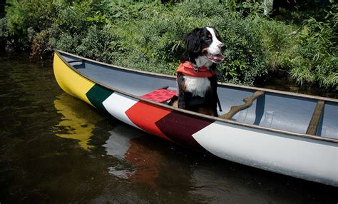 canoe boat synonym list of synonyms and antonyms of the word cool canoes