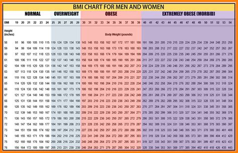 calculator weight bmi chart printable images free any chart exles