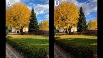 blind comparison  photography   iphone xr  google pixel  xl