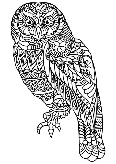 animal coloring pages pdf 25 best ideas about owl coloring pages on