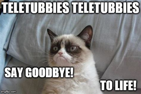 Goodbye Cat Meme - the gallery for gt goodbye cat meme
