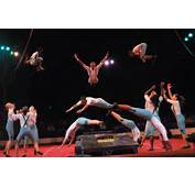 1000  Images About Tatatararara Circus On Pinterest