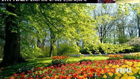 giardini di marzo chords i giardini di marzo live eventi a lecce