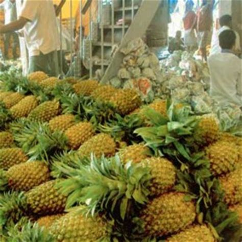 vashi market apmc market in vashi 187 hotel solitaire