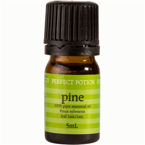 pine scented l oil pine perfect potion