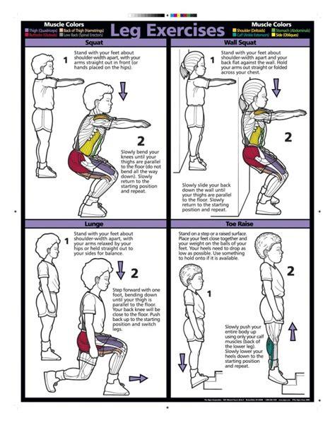 leg workout diagram leg stretches chart www imgkid the image kid has it