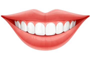 What Is Root Bridge by Dental Care 5 Steps To Maintain Healthy Teeth Dentistry